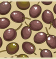 olive fruits pattern on color background vector image