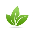 Eco icon with green leaf Isolated on white vector image vector image