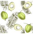 seamless pattern with hand drawn coconuts and palm vector image vector image
