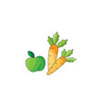 color apple and carrot vector image vector image