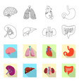 design body and human icon set body vector image vector image