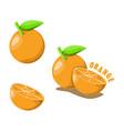 logo icon design orange farm vector image vector image