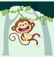 monkey hanging from liana in jungle vector image vector image