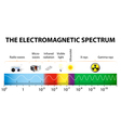 The electromagnetic spectrum diagram vector image vector image