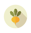 Turnip flat icon Vegetable root vector image vector image
