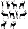 reindeer collection silhouette vector image