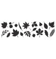 black autumn leaves decorative fall elements vector image vector image