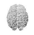 human brain gray color vector image vector image
