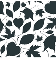 Seamless pattern with falling leaves Autumn vector image vector image