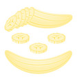 banana slices isolated on white vector image vector image