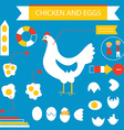 Chicken and eggs infographic set vector image vector image