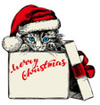 christmas kitten in santa stocking hat hand drawn vector image vector image