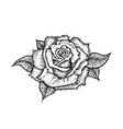 dotwork rose flower vector image vector image