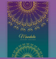 ethnic mandala decoration background design vector image