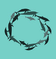 flat icon on theme save whales circle of dolphins vector image