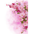 Vertical card with gentle pink sakura flowers vector image