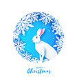 white rabbit in snowy frame merry christmas vector image