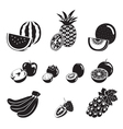 Fruits Icons Set Monochrome vector image vector image
