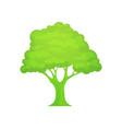 green logo tree vector image vector image