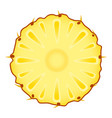 pineapple slice on white vector image vector image
