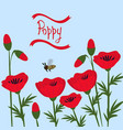 red poppies on a blue background vector image