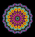 black background with colorful flower mandala vector image