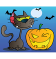 Black Cat And Winking Halloween Pumpkin vector image