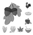 canada thanksgiving day monochrome icons in set vector image