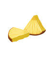fresh triangle slices of pineapple with peel vector image vector image