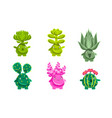 funny plants characters set fantasy succulents vector image vector image