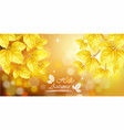 hello autumn with golden leaves background vector image vector image