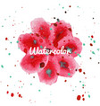 pink flower splash watercolor hand drawn vector image vector image