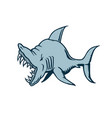 shark cartoon character vector image vector image
