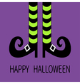 Witch legs with striped socks and shoes buckle vector image