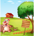 A pig in the farm near the empty signboard vector image