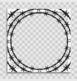 empty photo frame template with barbed wire vector image