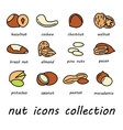 nut icons collection vector image vector image