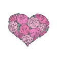 roses in shape of a heart vector image