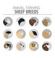 sheep breed icon set farm animal flat design vector image vector image