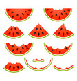 watermelon slices isolated vector image vector image
