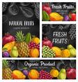fresh fruits sketch banners natural food vector image vector image