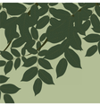 Walnut Tree leaves vector image vector image