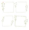 beautiful minimal white chamomile flower square vector image vector image