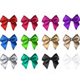 colorful satin bows isolated on white vector image