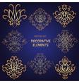 Golden decorative floral elements vector image vector image