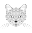 head cat on white background vector image