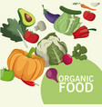 organic food kitchen products image vector image