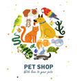 pet shop round composition vector image vector image