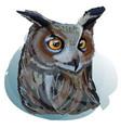 realistic eagle owl vector image