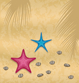 Sand background with starfishes and pebble stones vector image vector image